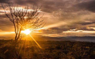 Get To Know Me: Uganda to Kalgoorlie – Part 2
